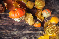 Todavía del otoño vida con las calabazas y las hojas en backgro de madera viejo Fotografía de archivo libre de regalías