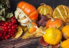 Todavía del otoño vida con las calabazas y las hojas en backgro de madera viejo Imagen de archivo