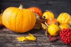 Todavía del otoño vida con las calabazas y las hojas en backgro de madera viejo Foto de archivo