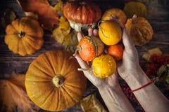 Todavía del otoño vida con las calabazas y las hojas en backgro de madera viejo Fotografía de archivo