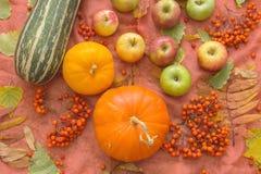 Todavía del otoño vida con las calabazas y las manzanas Imagen de archivo libre de regalías