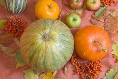 Todavía del otoño vida con las calabazas y las manzanas Fotos de archivo