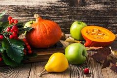 Todavía del otoño vida con las calabazas y las manzanas Concepto de la cosecha de la caída Imagenes de archivo