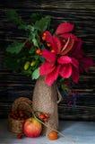 Todavía del otoño vida con las frutas y verduras Imagenes de archivo