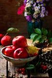 Todavía del otoño vida con las manzanas y las flores Fotos de archivo libres de regalías