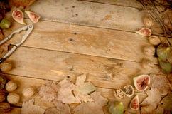 Todavía del otoño vida con los higos frescos Foto de archivo libre de regalías