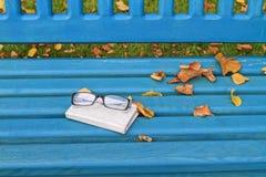 Todavía del otoño vida con los vidrios y el cuaderno Imágenes de archivo libres de regalías
