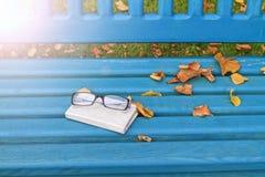 Todavía del otoño vida con los vidrios y los apuroses soleados del cuaderno Imágenes de archivo libres de regalías