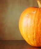 Todavía del otoño vida con una calabaza fresca en el bosque Imagenes de archivo