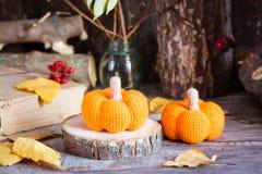 Todavía del otoño vida con una calabaza y hojas caidas Imágenes de archivo libres de regalías