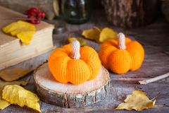 Todavía del otoño vida con una calabaza y hojas caidas Fotografía de archivo libre de regalías