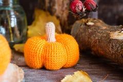 Todavía del otoño vida con una calabaza y hojas caidas Foto de archivo