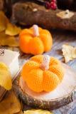 Todavía del otoño vida con una calabaza y hojas caidas Foto de archivo libre de regalías