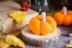 Todavía del otoño vida con una calabaza y hojas caidas Fotografía de archivo