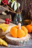 Todavía del otoño vida con una calabaza y hojas caidas Fotos de archivo libres de regalías