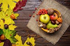 Todavía del otoño vida, cosechada con las hojas de la caída y la fruta del otoño, Fotos de archivo