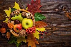 Todavía del otoño vida, cosechada de la fruta del otoño, regalos del otoño, c Imagenes de archivo