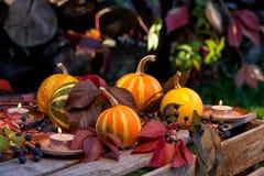 Todavía del otoño vida de calabazas, de hojas de otoño y de velas Fotografía de archivo libre de regalías