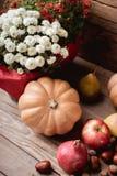 Todavía del otoño vida de la fruta Imagen de archivo libre de regalías