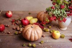 Todavía del otoño vida de la fruta Fotografía de archivo libre de regalías
