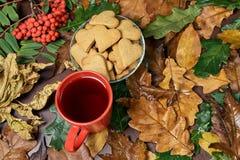 Todavía del otoño vida Galleta del corazón Ramificación del serbal Té negro Imágenes de archivo libres de regalías