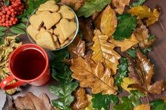 Todavía del otoño vida Galleta del corazón Té negro Diversas hojas Ramificación del serbal Imagen de archivo