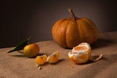Todavía del otoño vida rústica Fotos de archivo