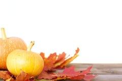 Todavía del otoño vida rústica con las calabazas y las hojas de oro en una superficie de madera Fotografía de archivo