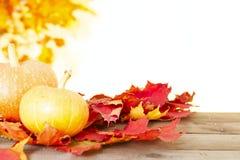 Todavía del otoño vida rústica con las calabazas y las hojas de oro en una superficie de madera Fotografía de archivo libre de regalías