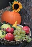 Todavía del otoño vida rústica con las mini calabazas y linterna Fotografía de archivo libre de regalías
