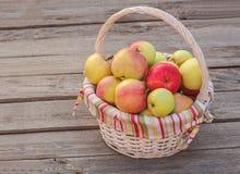 Todavía del otoño vida rural con una cesta de manzanas Fotografía de archivo