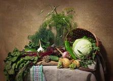 Todavía del país vida con las verduras Fotos de archivo libres de regalías