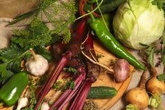 Todavía del país vida con las verduras Fotografía de archivo libre de regalías
