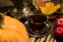 Todavía del té vida con el samovar, manzanas, calabazas anaranjadas maduras, hojas de arce, trigo en fondo de madera Foto de archivo