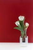 Todavía del tulipán vida blanca Fotografía de archivo