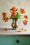 Todavía del tulipán vida ornamental Fotos de archivo libres de regalías