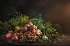 Todavía del verano vida de verduras y del eneldo maduros Fotos de archivo libres de regalías