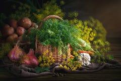 Todavía del verano vida de verduras y del eneldo maduros Imagenes de archivo