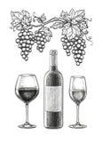 Todavía del vino vida stock de ilustración