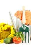 Todavía el cultivar un huerto vida con las verduras y las herramientas maduras frescas Foto de archivo