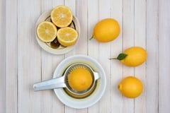 Todavía exprimir vida de los limones Fotos de archivo libres de regalías
