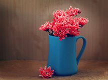 Todavía flores de la vida Imagen de archivo libre de regalías
