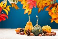 Todavía fondo del otoño de la vida fotografía de archivo