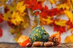 Todavía fondo del otoño de la vida fotos de archivo