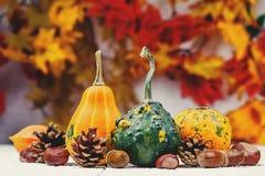 Todavía fondo del otoño de la vida foto de archivo
