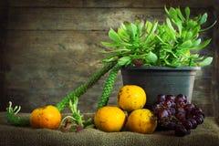 Todavía fotografía de la vida con las verduras y las frutas Fotografía de archivo libre de regalías