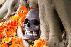 Todavía fotografía de la vida, cráneo en la llama del bosque Foto de archivo