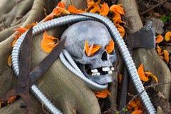 Todavía fotografía de la vida, cráneo en la llama del bosque Foto de archivo libre de regalías