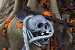 Todavía fotografía de la vida, cráneo en la llama del bosque Fotos de archivo