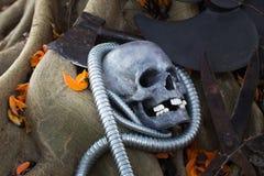 Todavía fotografía de la vida, cráneo en la llama del bosque Imágenes de archivo libres de regalías